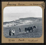 Glass Slide by photographer Charles Reid, Wishaw.  The slide is a view of farming on Arran