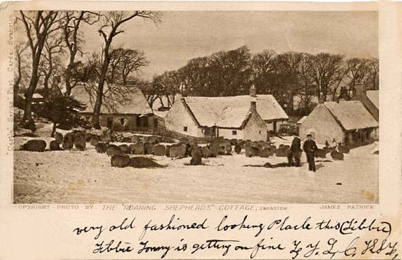 "Post Card - The ""Roaring Shepherds"" Cottage, Swanston - by James Patrick"