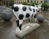 Edinburgh Cow Parade  -  2006  -  The Sheraton Hotel