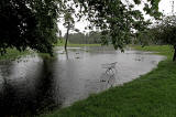 Inch Park, Liberton  -  July 2012   -  Still Raining