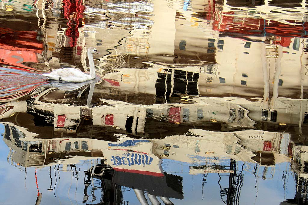 Reflections of the ship 'Wellservicer', and a swan,  at Prince of Wales Dock, Leith, 2011