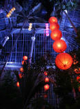 'Spirit' - A Chinese Spring Lantern Festival at the Royal Botanic Garden, Edinburgh  -  March 2008