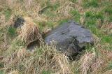 The 'Slidey Stane' in Holyrood Park  -  looking to the NW