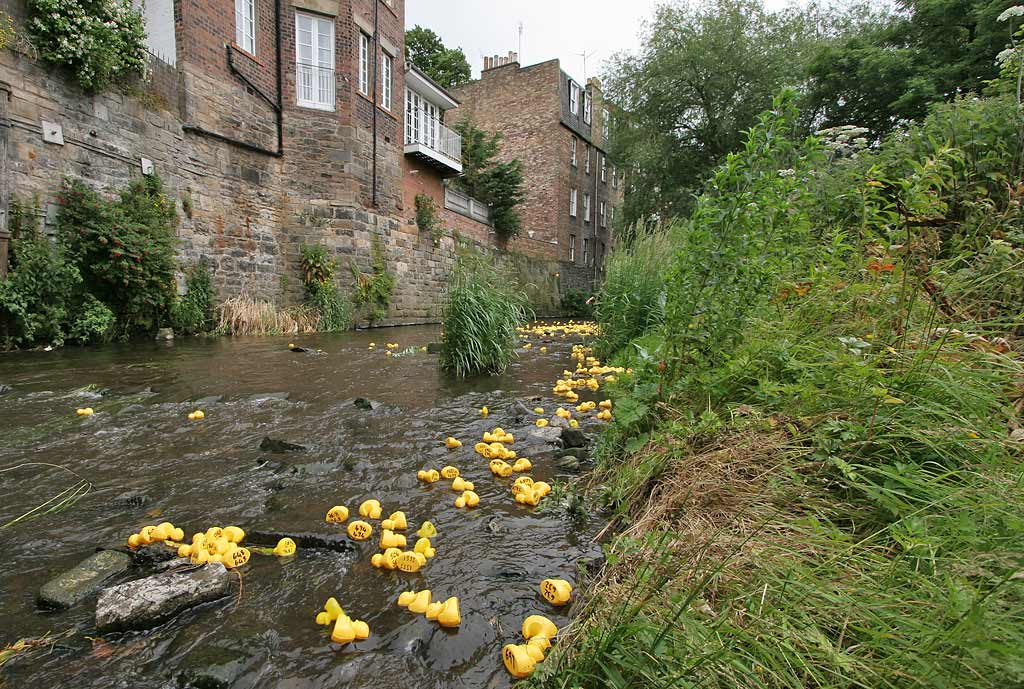 Stockbridge Duck Race, Water of Leith, Stockbridge  -  June 29, 2008