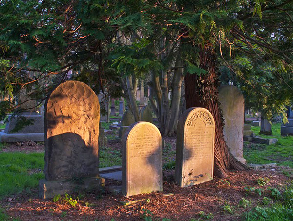 Photo taken by Allan Dodds, Nottingham, Nottinghamshire, England  -  Evening light at Warriston Cemetery, 2014