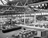 General View of the Flower Show at  Waverley Market before the visitors arrive - 1956