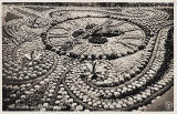 Postcard by WB - Floral Clock in Princes Street Garedens, 1923