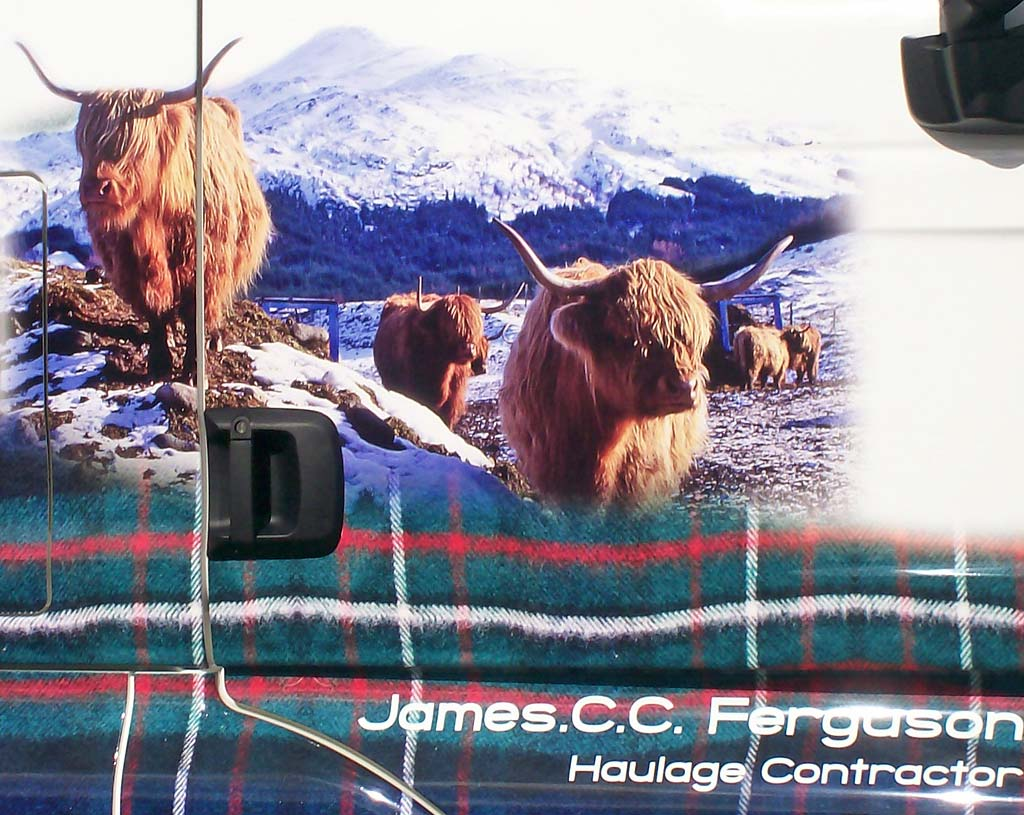 Truck decorated with photos, including my photograph of highland cattle in the snow.