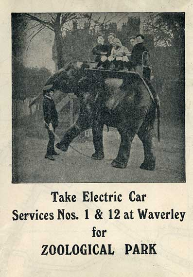 Advert on the back of an Edinburgh Corporation Tramways Department map, published around 1928  -  Elephant Rides at Edinburgh Zoological Park