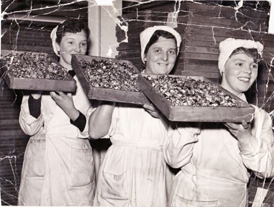 Three of the workers at Duncan's Chocolate Factory, Beaverbank, Edinburgh