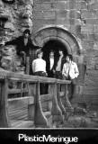 The Plastic Meringue  -  Edinburgh 1960s Band