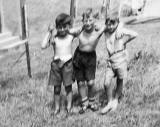 Three Boys on the back green at West Granton Road  -  Photo taken around 1954