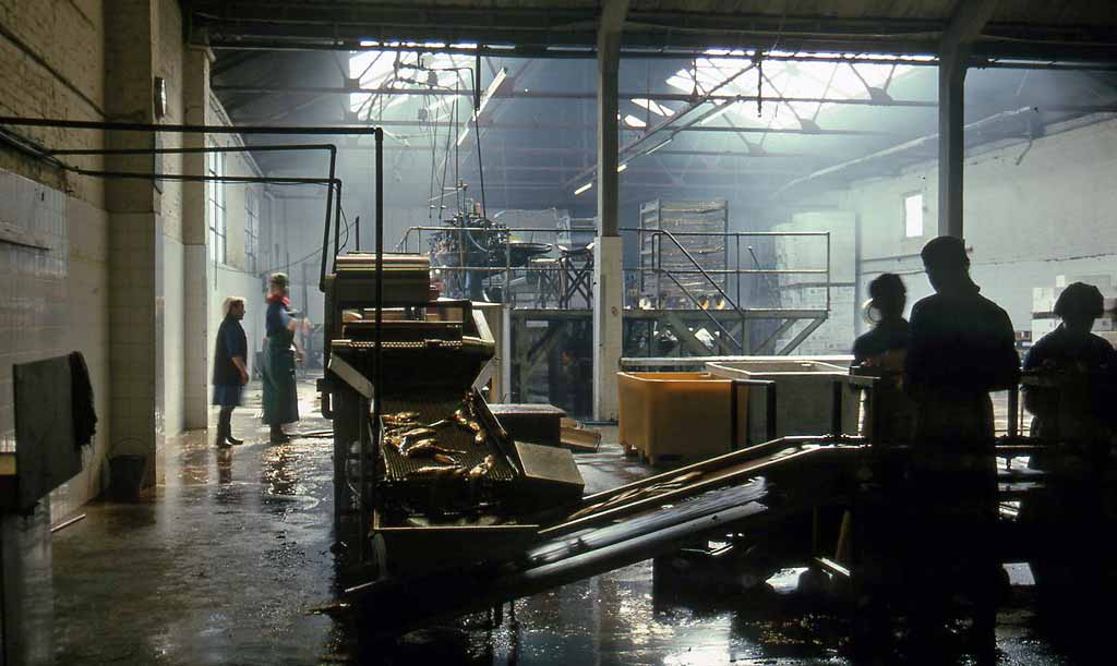 Edinburgh at Work - Croan & Son, kipper factory, Newhaven