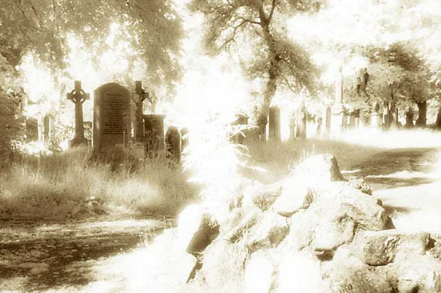 0_my_photographs_infra-red_-_gravestone_1ea20_large