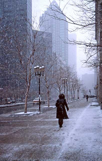 سرمای زمستان