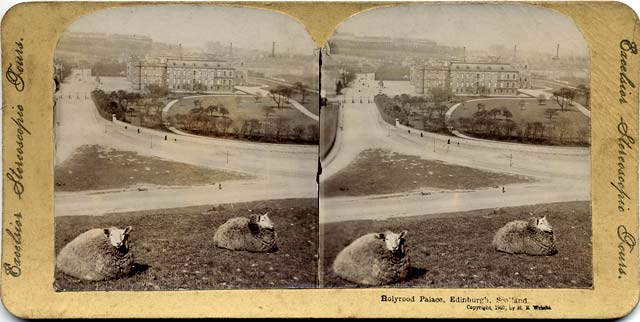 Stereo view in Albumable series  -  Holyrood Palace