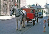 Milk deliveries by horse and cart in Leslie Place  -  early 1960s