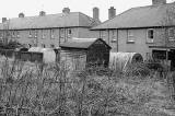 Anderson Shelters in Back Gardens at Newtoft Street, Gilmerton  -  2011